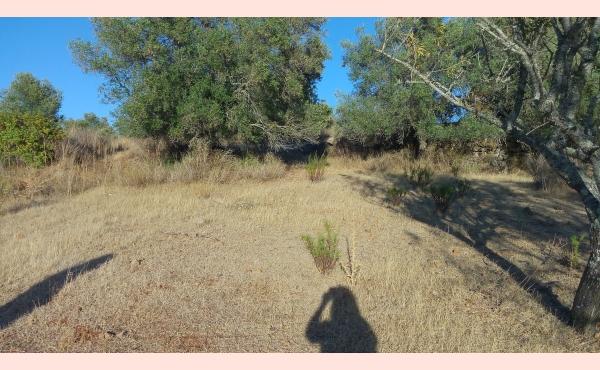KM-076 Terreno Rustico
