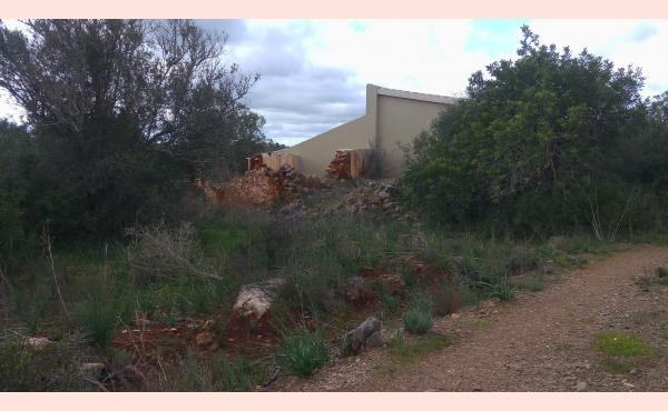 KM-066 Ruina