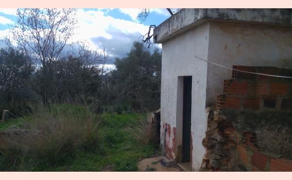 KM-048 Casa Rustica