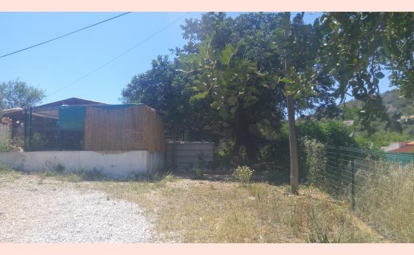 KM-049 Terreno com Casa de Madeira