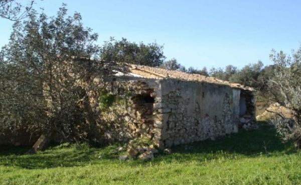 KM-031-Quintinha - Ruina para Recuperar